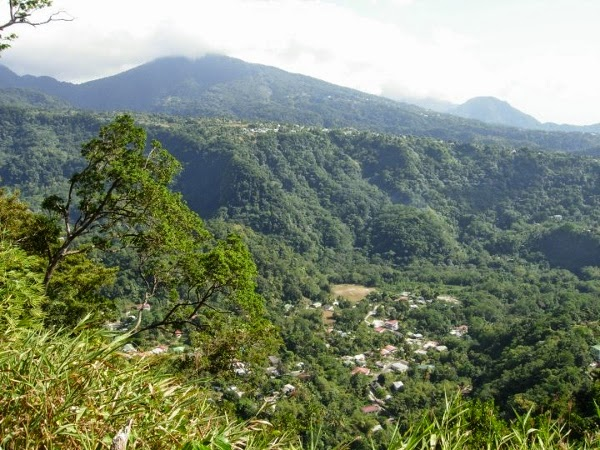 The lush greenery of Dominica