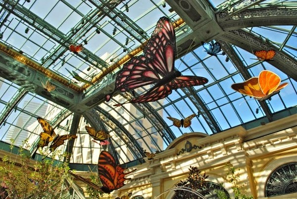 Butterflies inside the Bellagio in Las Vegas, Nevada