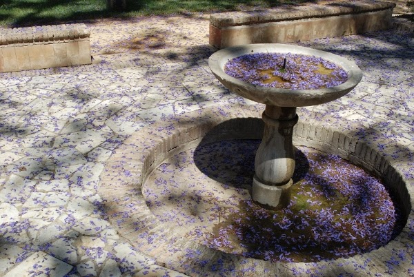 Gorgeous fountain with purple flowers in Seville, Spain