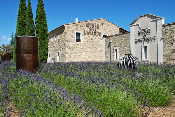 Lavender Museum in Avignon, France