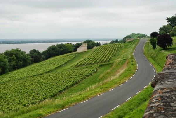 Exploring the vineyards of Bordeaux