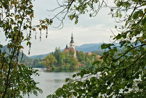 But You May Need A Few Days For Bled