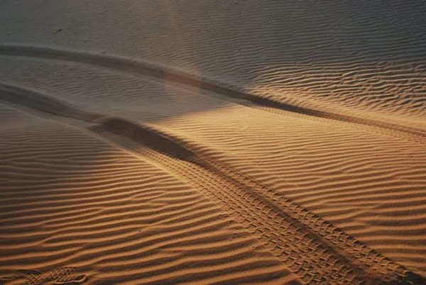 Truck Tracks in the Sand in the Wahiba Desert, Oman