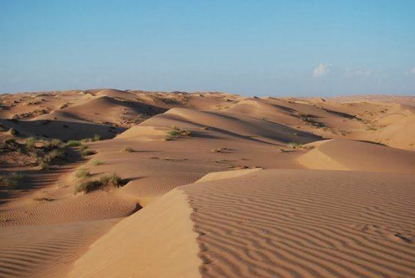 Dune Bashing in the Wahiba Sands