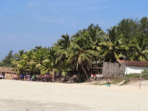 Benaulim Beach, India