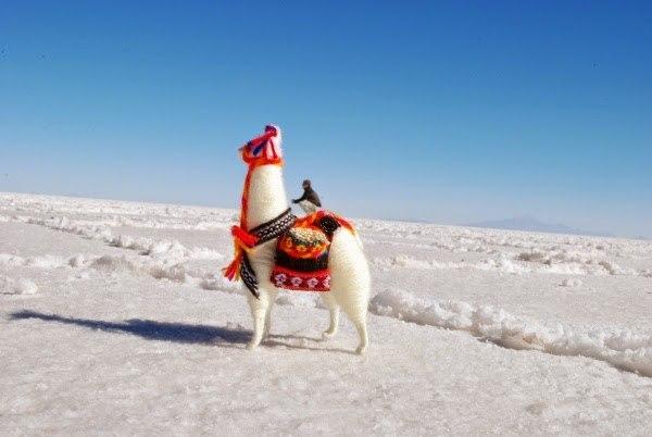 The llama just got huge!