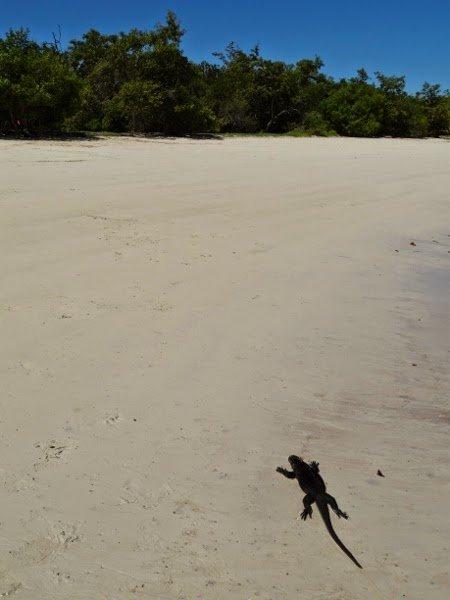 I looovvveee this beach.