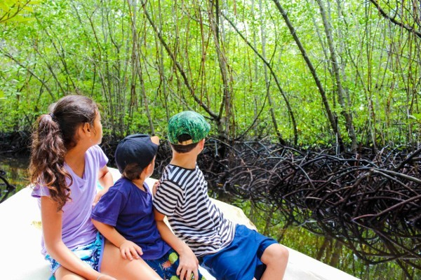 Morgan Family in the Mangrove Forest of Nusa Lembongan