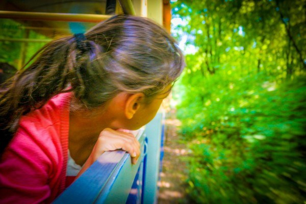 Riding the Miniature Railway in Poland