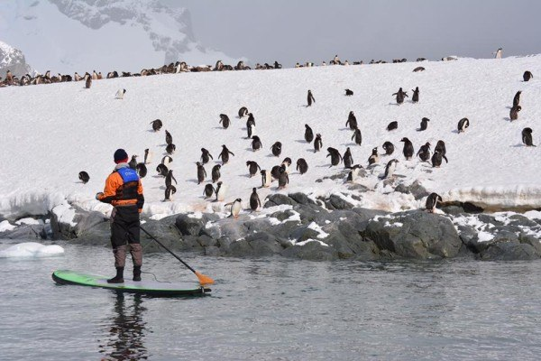 Stand Up Paddleboarding in Antarctica