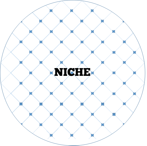 A topic in a global field where you can touch on nearly all searches that come through? Winner niche idea!