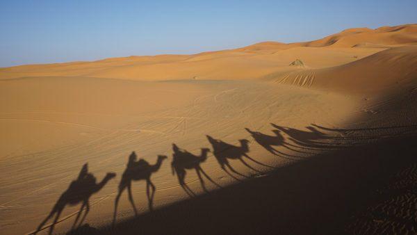 Sahara Desert Trips in Morocco