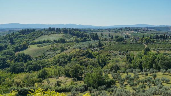 Tuscany Tour Walks of Italy