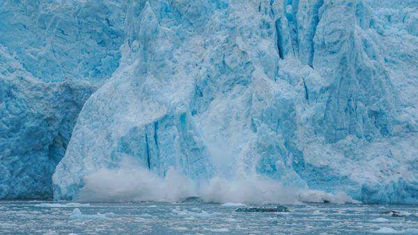 Glacier Calving in Kenai Fjords