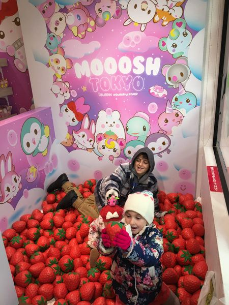 Places to Visit in Japan with Kids