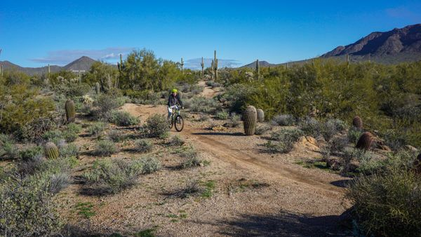 Biking in Usery Mountain Regional Park