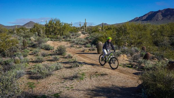 Biking with Arizona Outback Adventures