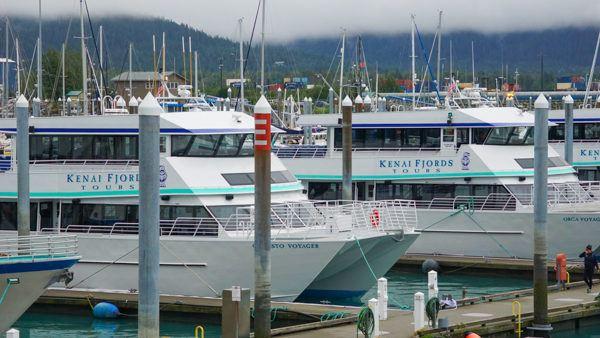Kenai Fjords Tour Boats