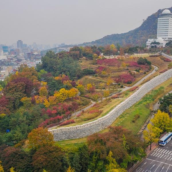 Namsan Park from Hilton Seoul Room