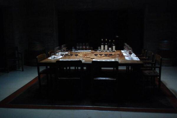 Wine Tasting at Puletna in Mendoza