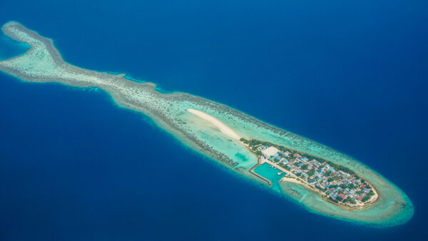 Aerial Shot of Maldives Island