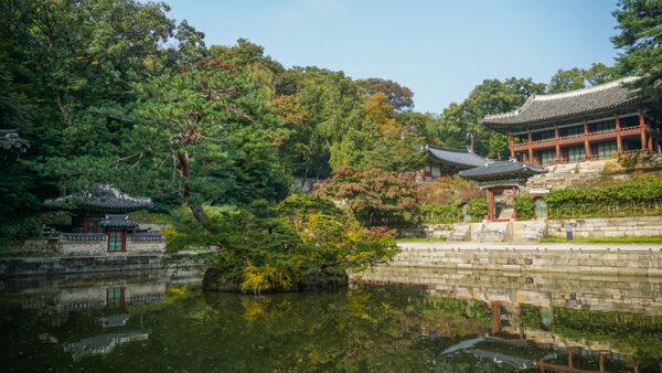 Secret Garden at Changdeokgung Palace