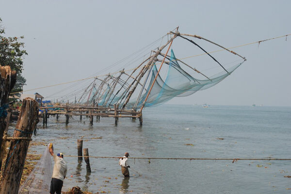 Fort Kochi Fishing