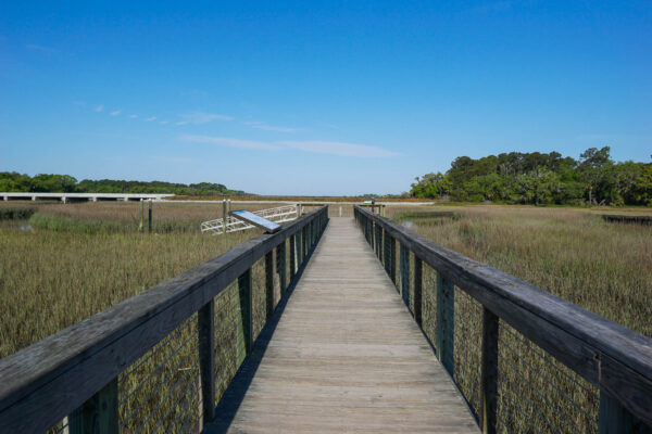 Walking Trail at the Coastal Discovery Museum