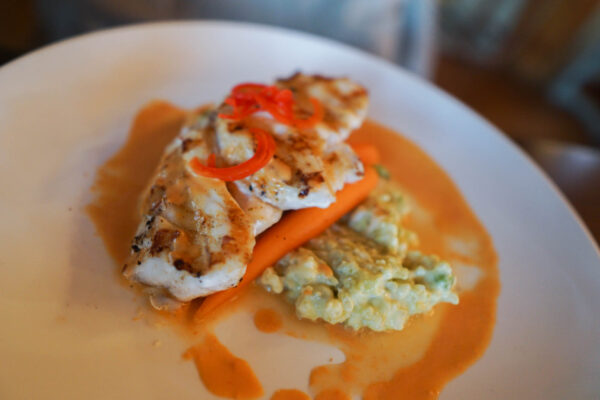 Grouper at the Old Oyster Factory