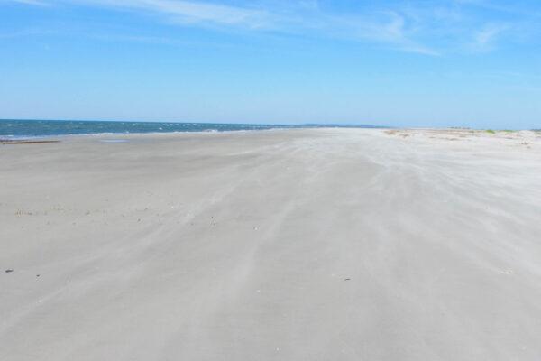Gorgeous Beach on Little Tybee