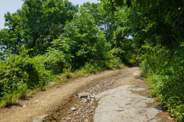 Hiking Up the Maryland Heights Trail