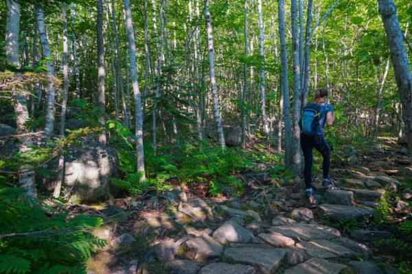 Typical Hiking at Acadia National Park