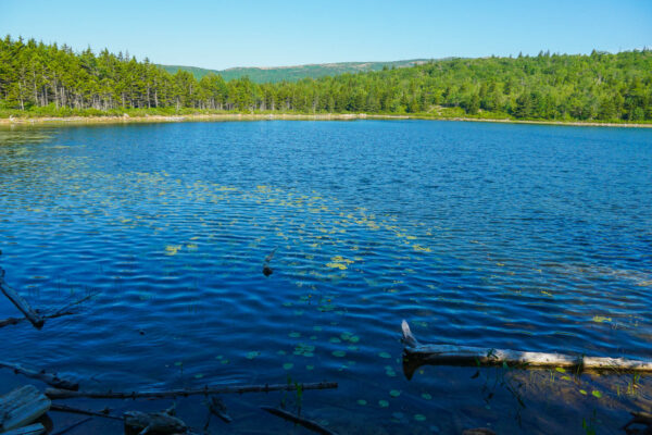 The Bowl Pond at Acadia National Park